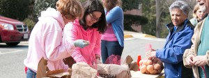 Students, staff and faculty bagging potatoes for gleaning charity