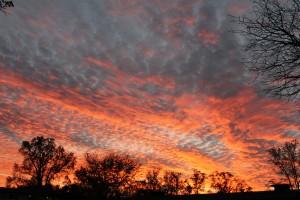 Image: Sunrise